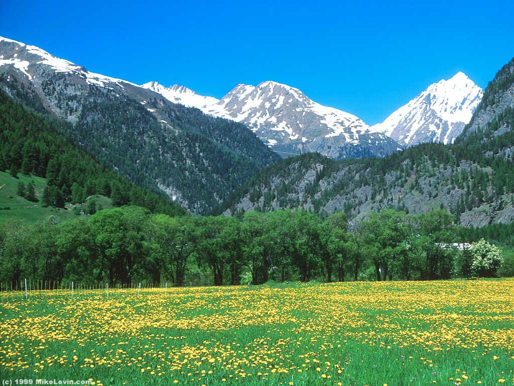 New discoveries along the golden path le splendide voyage for Sfondi invernali per desktop gratis