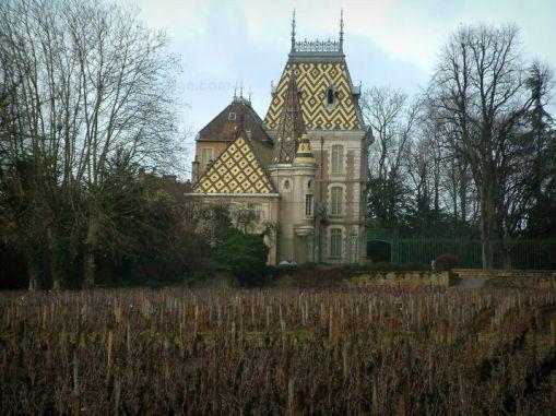 Cote D'Or, Burgundy
