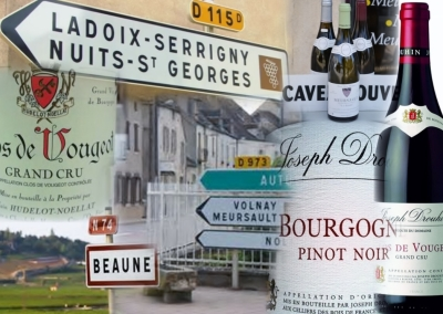 Côte d'Or , Burgundy, wine route
