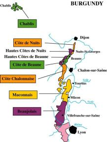Burgundy's Wine Route Map, France