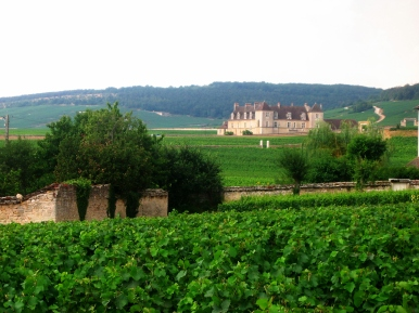 Clos de Vougeot, Côte d'Or, Burgundy, France