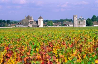 Wine Route, Côte d'Or, Burgundy, France