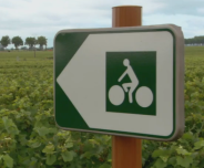 Bicycle Route, Vineyards, Côte d'Or, Burgundy, France