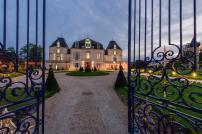 Vineyards le splendide voyage - The splendid transformation of a vineyard in burgundy ...