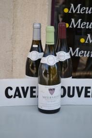 Meursault, Côte d'Or, Burgundy, France