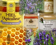 Honey (Miel) from Provence, France