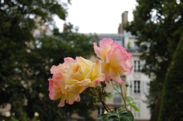 Musée Rodin, Hôtel Biron, Rose Garden, Paris, France